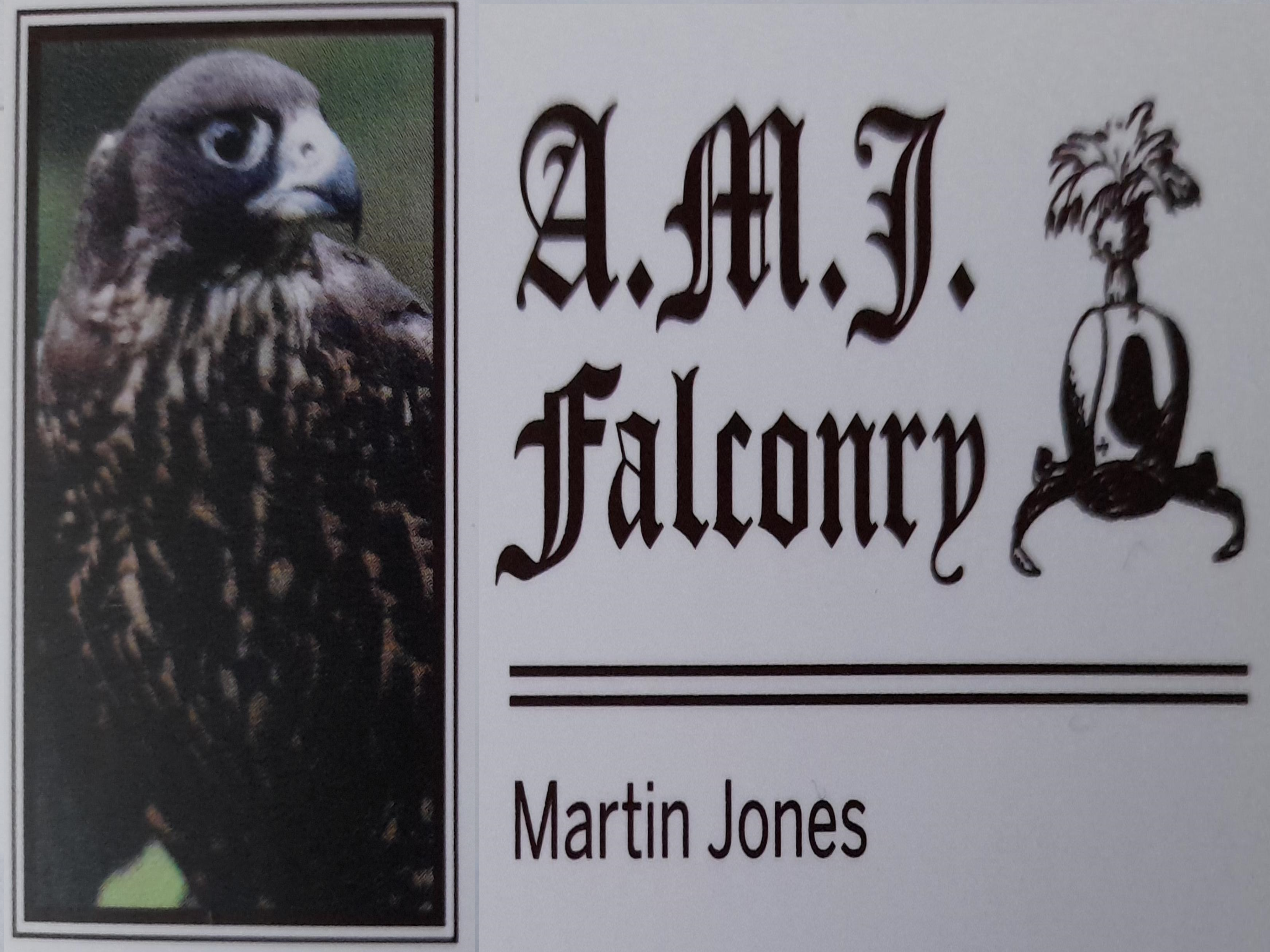 Falconry Online